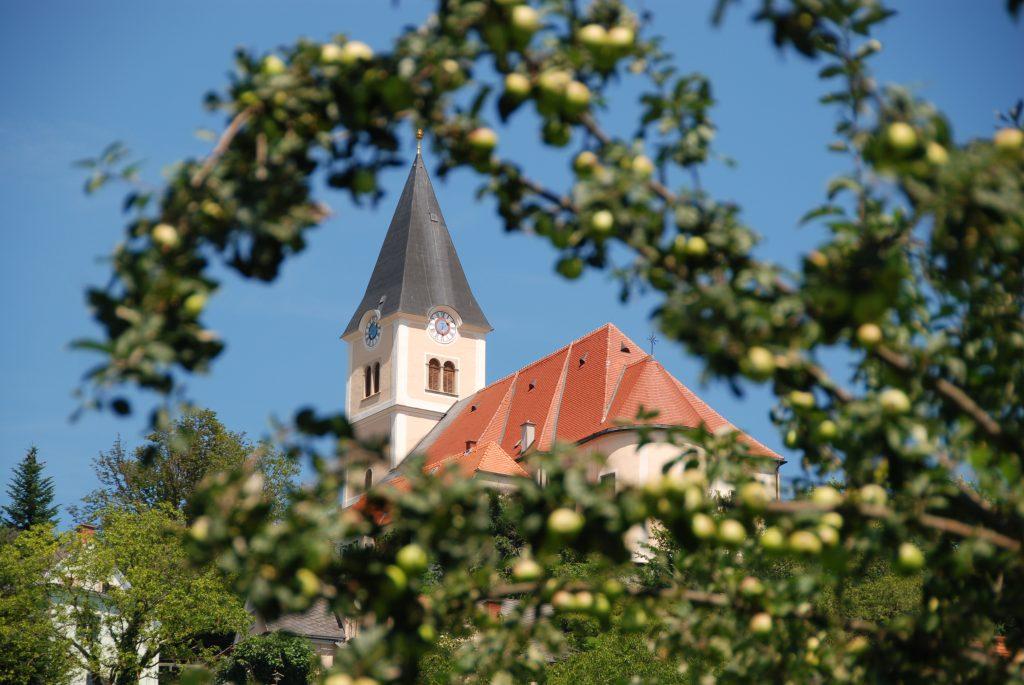 Kirchturm mit Apfelbaum